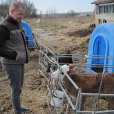 г-н Ян Нишвиц выбирает породу для будущего проекта